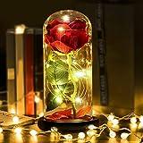 Kapmore Rosa Bella y Bestia Rosa Eterna y luz LED de Regalo para San Valentín Boda de cumpleaños de aniversario de Boda
