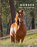 Horses 2021 Calendar: Horses 2021 Wall Calendar | January to December | One Year Photo Calendar Schedule Organizer Planner for 12 Months | With Notes ... Present for Colleague Coworker Manager Friend