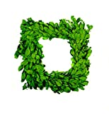 Square Natural Preserved Boxwood 12 inch Wreath, 1pc