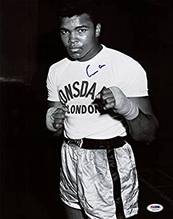 Muhammad Ali Signed 'Cassius Clay' 11X14 Photo ITP #5A46966 - PSA/DNA Certified - Autographed Boxing Photos