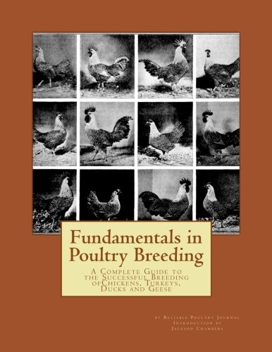Fundamentals in Poultry Breeding: A Complete Guide to the Successful Breeding ofChickens, Turkeys, Ducks and Geese