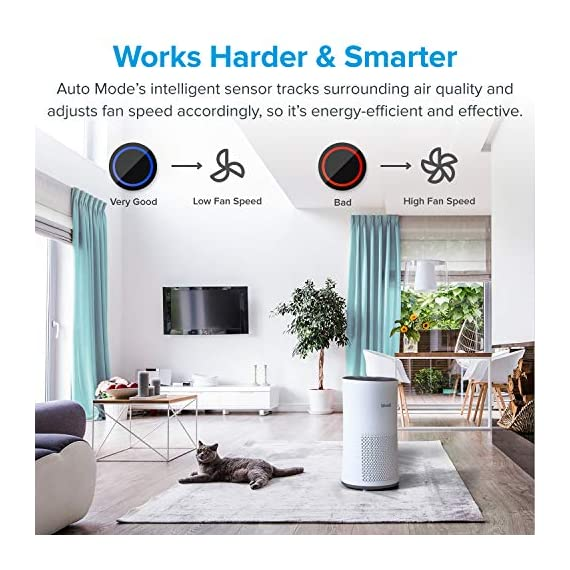 LEVOIT Air Purifier for Home Large Room with H13 True HEPA Filter, Air Cleaner for Allergies and Pets, Smokers, Mold… 2 Professional Air Care: Breathe in air that's free of 99. 97% of 0. 3 micron airborne particles such as dust, and pollen The activated carbon filter absorbs cooking odors, household odors, smoke, and volatile organic compounds (VOCs) Ideal for Allergies and Pet Owners: True HEPA Filter reduces pet odors, and traps pet fur and other contaminants It also helps relieve allergies by capturing airborne contaminants such as dust, pet dander, pollen, and mold. Wide Coverage: Enjoy fresh air in only 30 minutes in rooms as large as 1076ft², and 15 minutes in rooms as large as 538 ft². Maximum benefits 538 ft².