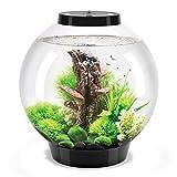 biOrb Classic 30L Aquarium in Black with MCR LED Lighting