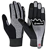 Winter Gloves for Men and Women Light Weight Touch Screen Waterproof Windproof Thermal Fleece Warm Gloves for Biking Hiking Driving Black Size M/L/XL