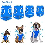 【Final Everything Must Go】 Pet cooling vest coat, Cool Coat for Dogs outdoor, Reflective Safety Sun-proof Pet Jacket Mesh Vest with Magic Tape for Small Dogs - Size S (Blue)