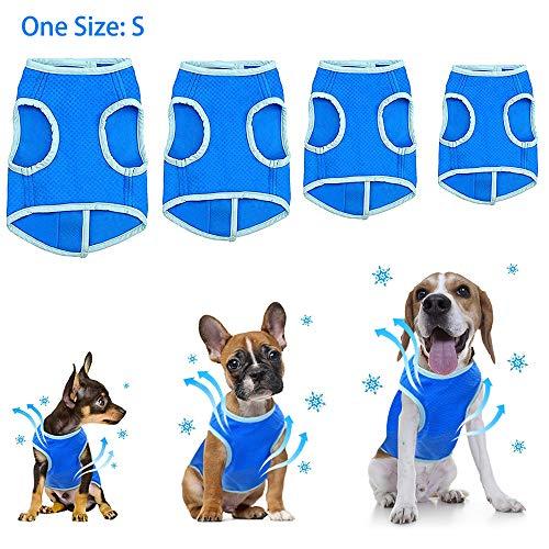 Chaleco de refrigeración para mascotas, abrigo fresco para perros al aire libre, reflectante de seguridad solar, chaleco de malla con cinta mágica para perros pequeños, talla S (azul)