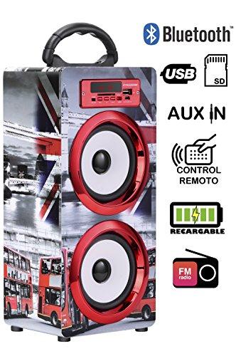 DYNASONIC - Altavoz Bluetooth Portatil 10W | Reproductor mp3 Inalámbrico Portátil, Lector USB SD, Radio FM - Modelo 020-1