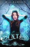 Wynter: A Quirky Witch Romantic Comedy (Silver Skates Book 1) (Kindle Edition)