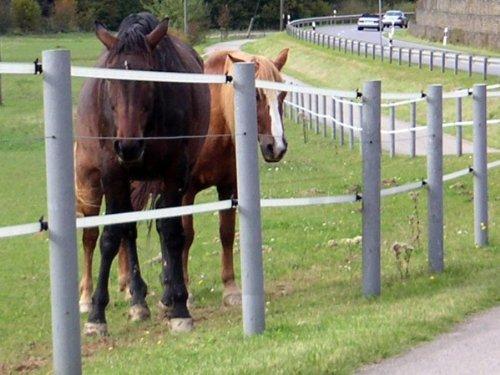 Zaunpfahl Zaunpfähle Pfosten Pfahl für Weidezaun Gartenzaun grau 175 x 6cm