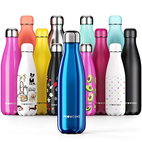 Proworks Performance Stainless Steel Sports Water Bottle | Double Insulated Vacuum Flask for 12...