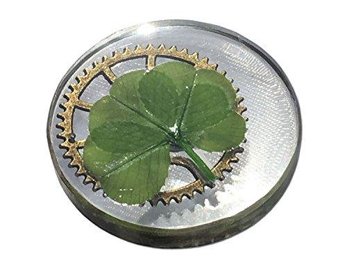 KIN-HEBI Trébol de Cuatro Hojas Real, símbolo de Bolsillo de Buena Suerte, conservado, 3.2 cm (Incluyendo Grandes Engranajes metálicos)