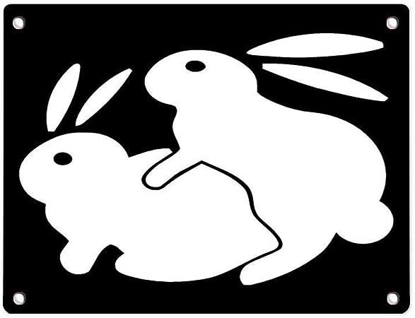 Bunnys sex