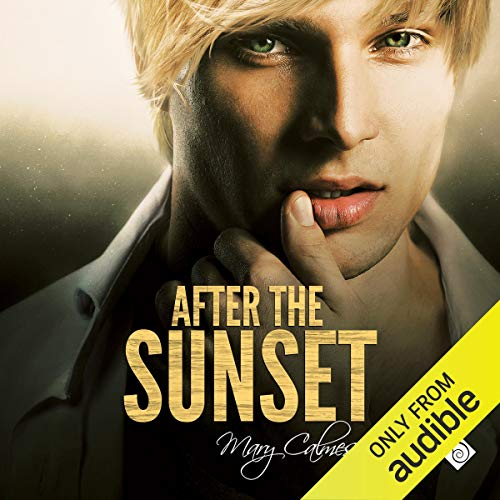 Couverture de After the Sunset