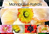 Mohnblueten-Portraets (Wandkalender 2022 DIN A4 quer): Mohnblumen - interessant und ausdrucksstark (Monatskalender, 14 Seiten )