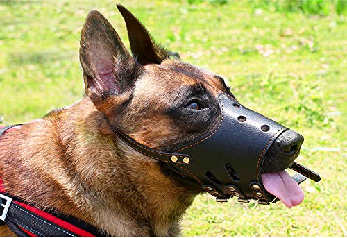 None/Brand Dog Muzzle, Breathable Basket Muzzles for Small, Medium, Large and X-Large Dogs, Stop Biting, Barking and Chewing, Best for Aggressive Dogs (XL)