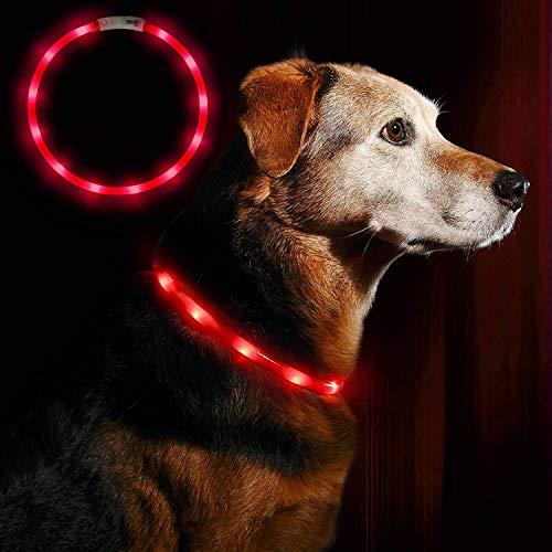 LED Leuchthalsband Hunde Halsband - Anicoll USB wiederaufladbar - Längenverstellbarer Haustier Sicherheit Kragen für Hunde und Katzen- 3 Modus 12 Lichte (rot)