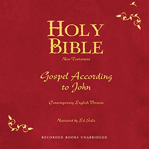 Holy Bible, Volume 25 audiobook cover art