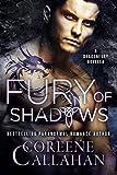 Fury of Shadows (Dragonfury Scotland Book 2)