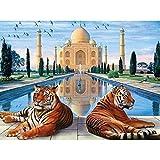 AJleil Puzzle 1000 Pezzi Due tigriArtPicture Puzzle 1000 Pezzi clementoni Gioco di abilità per Tutta la Famiglia, colorato Gioco di posizionamento50x75cm(20x30inch)