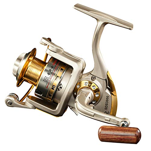 Diwa Spinning Fishing Reels for Saltwater Freshwater 1000 2000 3000 4000 5000 6000 Series Fishing Spool Left/Right Interchangeable Trout Carp Spinning Reel 10 Ball Bearings Light and Smooth (1000)