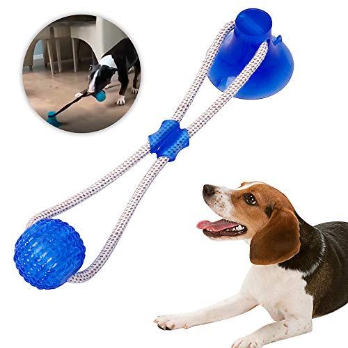 Ciujoy Hundespielzeug mit Saugnapf, Kauseilballspielzeug für Hunde Multifunktions Pet Molar Biss Spielzeug aus Naturkautschuk Zahnreinigung mit Zahnpflege-Funktion für Kleine mittlere Hunde (Blau)