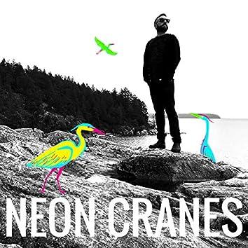 Neon Cranes