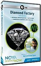 Nova: Science Now 2009 - Episode 1 - Diamond Facto [DVD] [Region 1] [US Import] [NTSC]