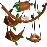 DODUOS 5 PCS Juegos de Cama Colgante de Hámster Hamaca para Animales Pequeños Jaula de Columpio de Bosque para Hámster Ardilla Pájaro Loro Rata Planeador de Mascotas pequeñas para Jugar y Dormir