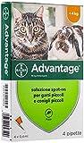 Advantage Soluzione Spot On per Gatti e Conigli Piccoli, 40 mg, 4 Pipette