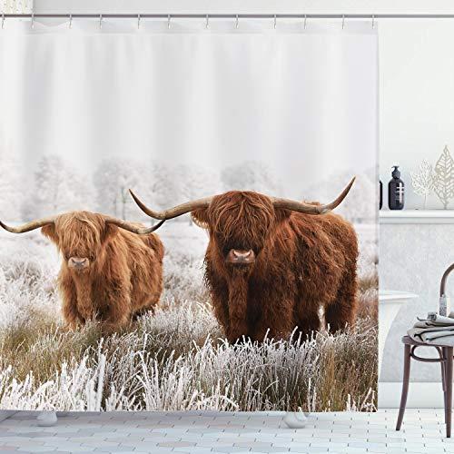 Ambsunny Bull Duschvorhang Highland Kuh Walking in Grassland Tier Wildlife Western Farm Haus Grassland Badezimmer Dekor Set mit 12 Haken 152,4 x 180,9 cm, braun