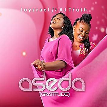 Aseda(gratitude)
