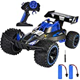 RC Car, NQD 2019 Updated 1/16 Scale High Speed Remote Control Car, 2.4Ghz Off Road RC Trucks with Two Rechargeable Batteries, Electric Toy Car for Toy Gifts for 4, 5, 6, 7, 8 Year Old Boy