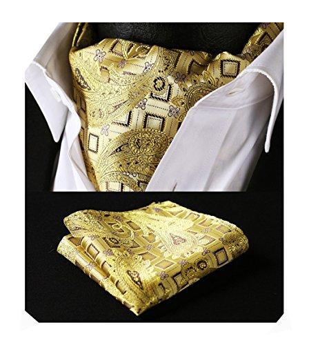 HISDERN Krawattenschal Herren Gelb Gold Paisley Elegant Halstuch Hochzeit Business Ascot Krawatte und Einstecktuch Set