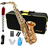 JUUXAAN Alto Saxophone Eb beginner Saxophone includes brush canvas suitcase glove whistle piece cork plaster wipe cloth neck strap and other accessories… (Popular)