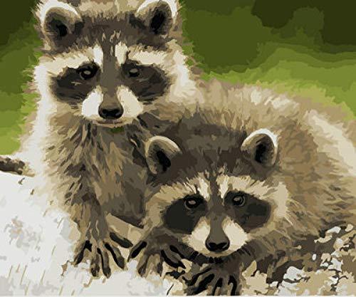 QIANERA DIY Malen Nach Zahlen Kits Zwei kleine Waschbären Zeichnung Malen Nach Zahlen Erwachsene Kinder Acrylfarbe auf Leinwand Für Zimmer Artwork 40X50 cm