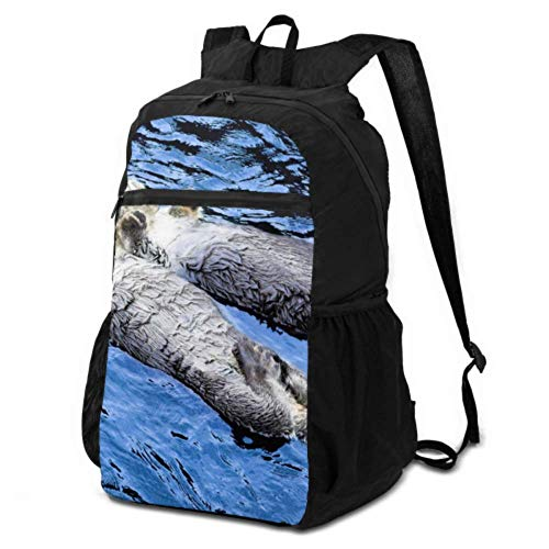 JOCHUAN Daypack Hiking Cute Funny Otter Floating in River Lightweight Backpack Packable Daypacks for Hiking Lightweight Waterproof for Men & Womentravel Camping Outdoor