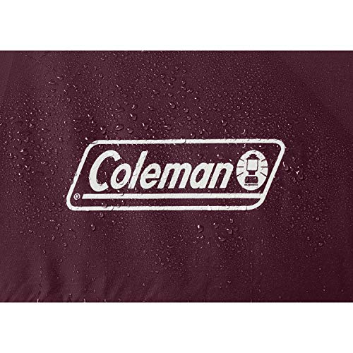 Coleman 4-Person Skydome Camping Tent, Blackberry