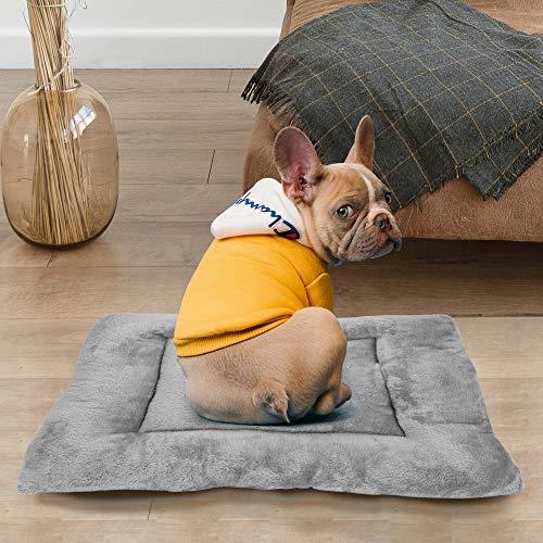 cuccia cane 50x70 BCASE Cuccia per Cani
