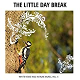 The Little Day Break - White Noise and Nature Music, Vol. 5