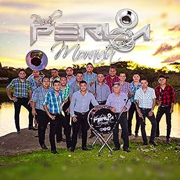 Banda Perla Morada (En Vivo)