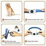 LED Hunde Halsband, LaRooTM Blinkende Leuchtendes LED Sicherheit Halsbänder - 5