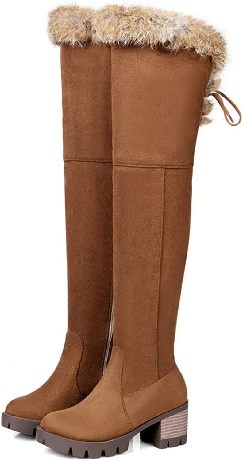 Webb Perkin Women Winter Plush High Heels Long Boots Female Warm Suede shoes Plus Size Lady Over The Knee Boots