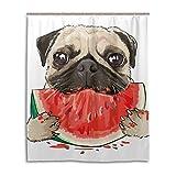Lafle wasserdichte Duschvorhänge Lustiger Mops H& Essen Wassermelone Home Decor Badezimmer Vorhang mit 12 Haken, 152 x 182 cm