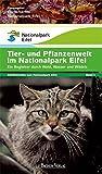 Tiere und Pflanzen im Nationalpark Eifel: Ein Begleiter durch Wald, Wasser und Wildnis (Schriftenreihe zum Nationalpark Eifel)
