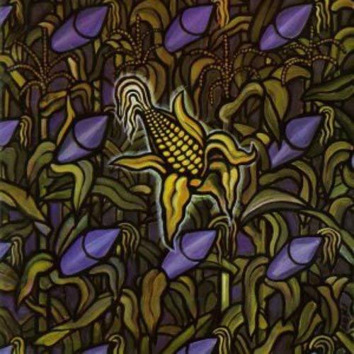 Against the Grain [Vinilo]