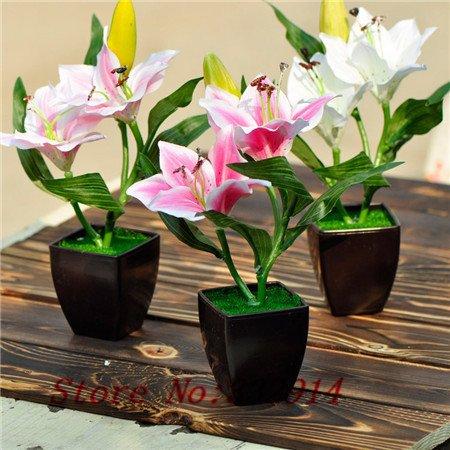 Hot Sale 2016 20 Couleurs graines Lily rares Graines de fleurs 50pc / Paquet Graines Bonsai pour Maison & Jardin
