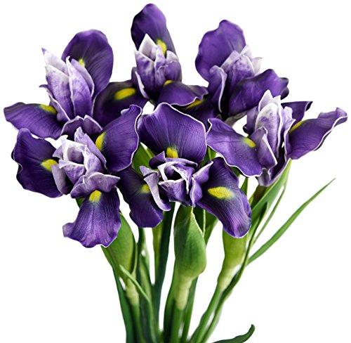 FiveSeasonStuff 6 Long Stems (Dark Purple) Real Touch Artificial Iris Flowers for Home Shop Office Restaurant Wedding Decoration Party DIY Flower Arrangement, Height: 60cm