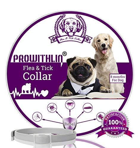 Collare antipulci e zecche per Cani, Collare Regolabile Impermeabile, Soluzione Naturale Contro i parassiti per Cani Adulti, 63 cm 8 Mesi Taglia Unica per Tutti i Cani. (1 Pacco)