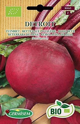 Germisem Orgánica Detroit Semillas de Remolacha 4 g, ECBIO9045