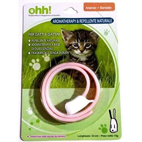 Farm Company kattenhalsband met natuurlijk afweereffect, oranje en sandalen, 33 cm
